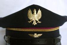 Rogatywka PLK, orzełek i logo