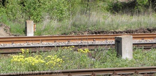 Zewnętrzne punkty łączności kolejowej