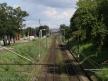 Widok na szlak w kierunku Torunia Wschodniego